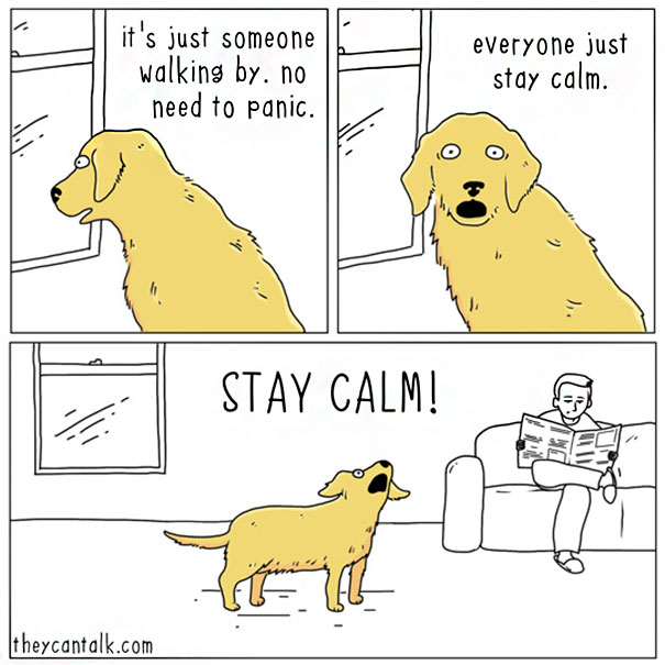 funny-animal-comics-they-can-talk-jimmy-craig-part2-012-58b3f01fa4aa2__605