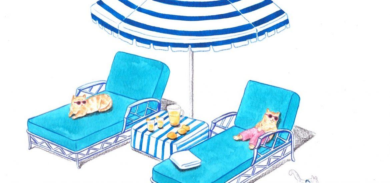 Vacanze esitve e gatti al mare
