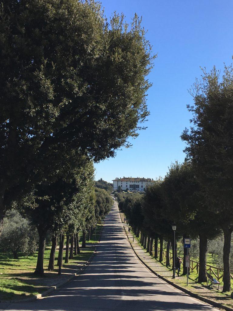 Il viale di Artimino e la Villa Medicea