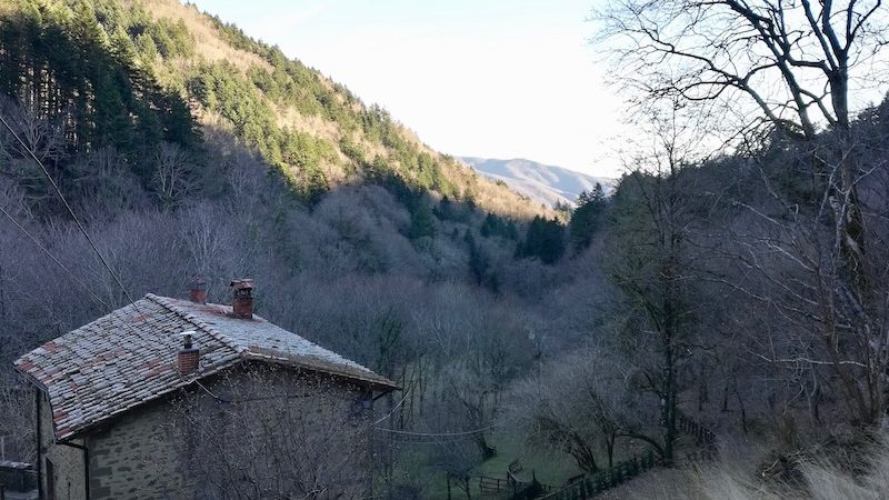 La valle di Camaldoli, in Casentino